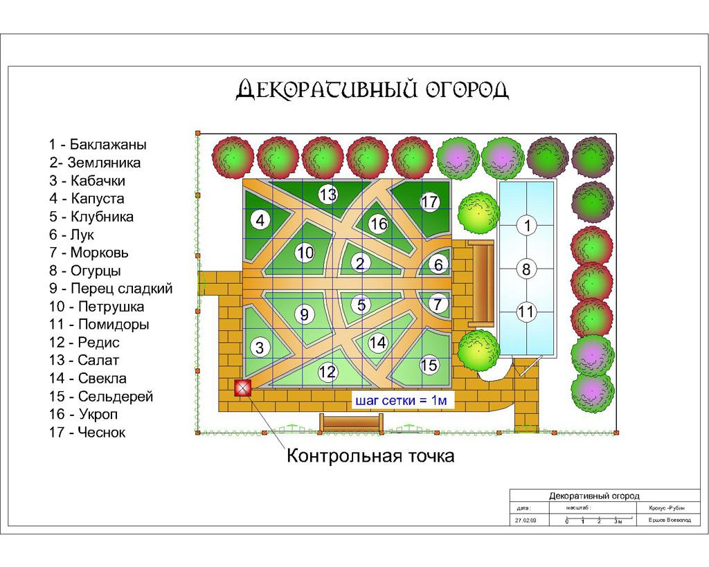 огороде овощей посадки в схема